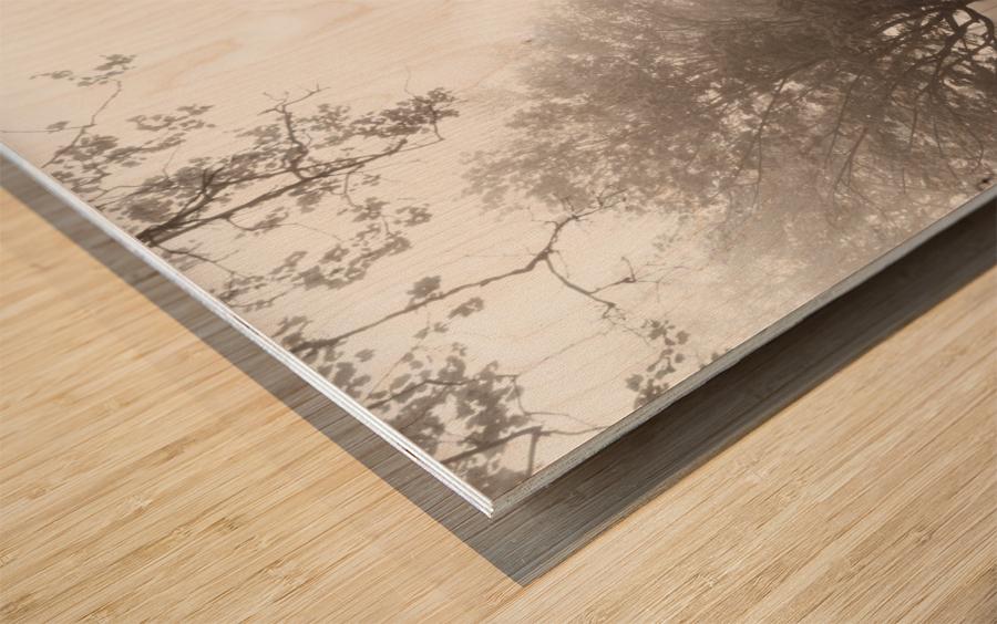Vandergrift ap 2884 Wood print