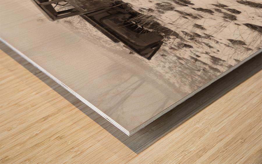 Step Side ap 1734 B&W Wood print