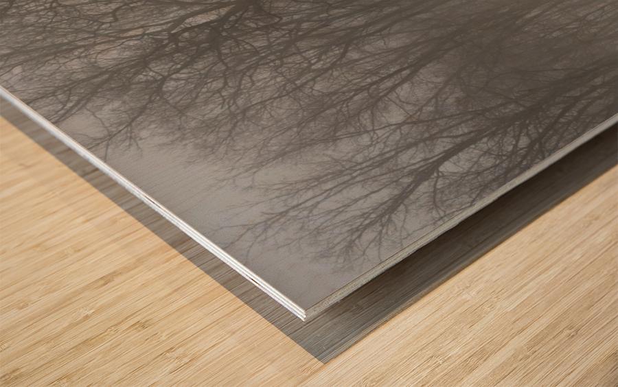 Treeline & Buck apmi 1548 Wood print