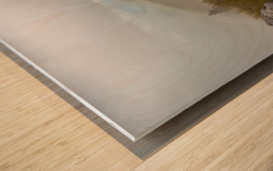 Low Ceiling ap 2945 Wood print