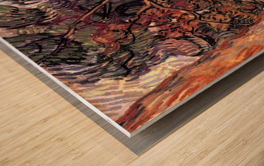 Study of Pine Trees by Van Gogh Wood print