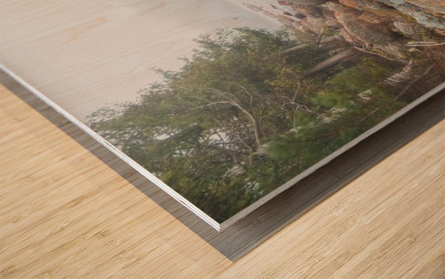 Boulders ap 2369 Wood print