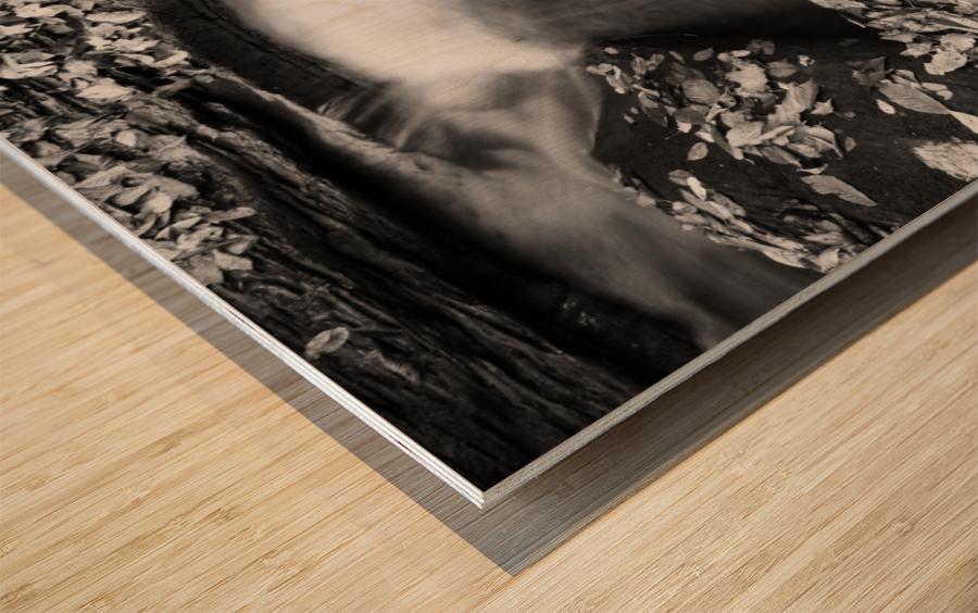 Roaring Run ap 1961 B&W Wood print