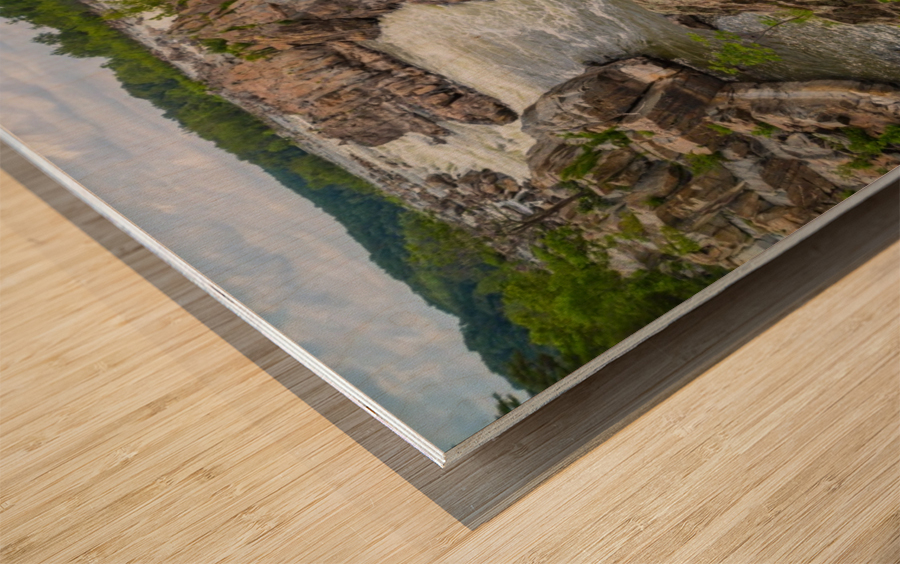 Great Falls ap 2019 Wood print