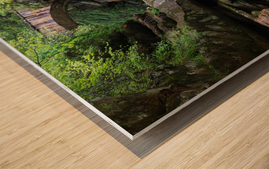Upper Falls ap 2058 Wood print