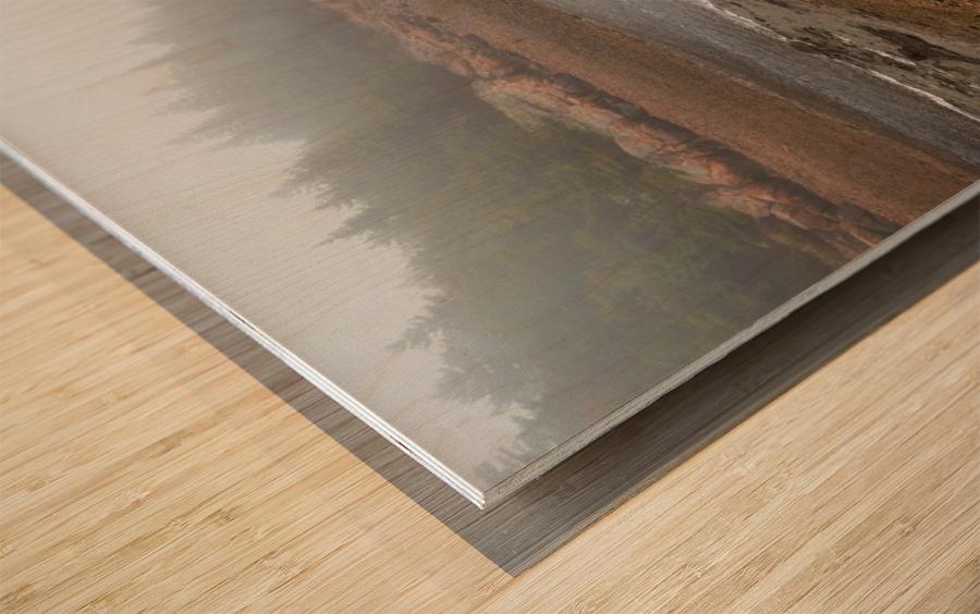 Low Tide ap 2296 Wood print
