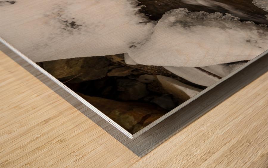 Ice ap 2726 B&W Wood print