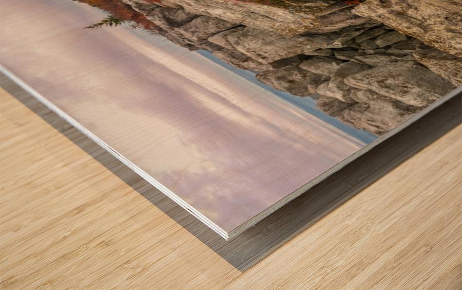 Bear Rocks Preserve apmi 1790 Wood print