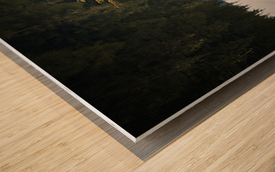 Reflection on a Bonsai Tree Wood print