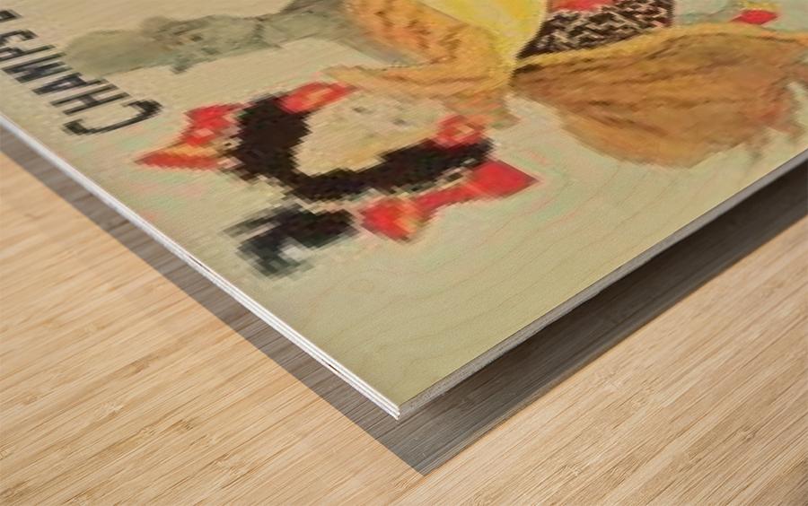 Palais de Glace Wood print