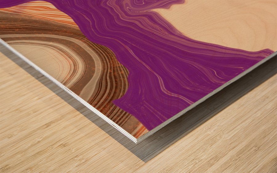 Southwest View Wood print
