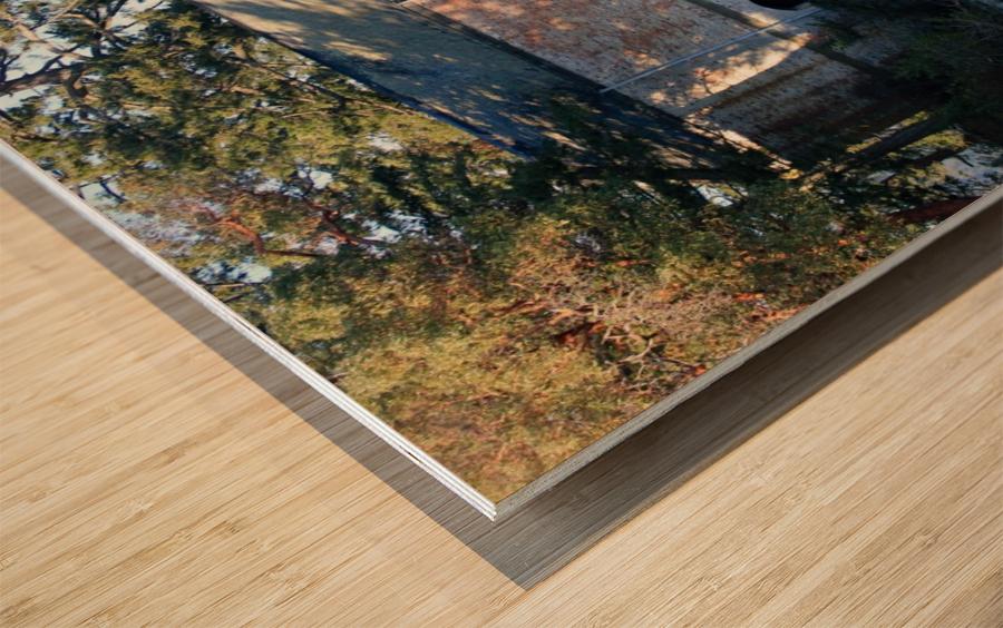 Cole Island (Victoria, BC) Wood print