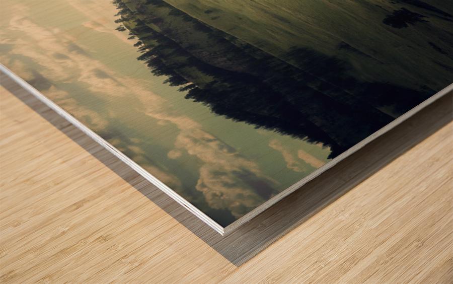 Where The Bison Roam Wood print