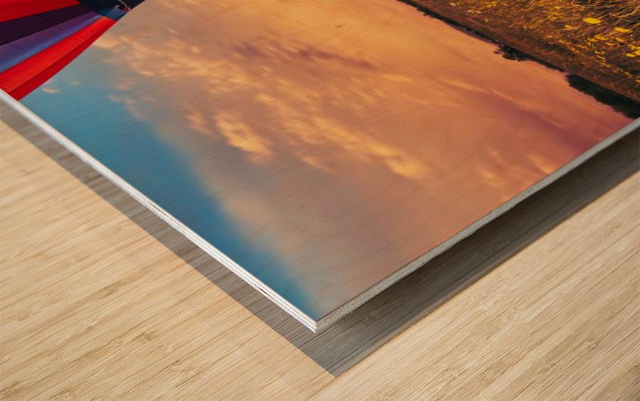 The Aeronaut Wood print