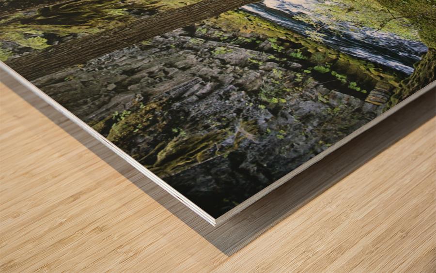 The Mckenzie River Wood print