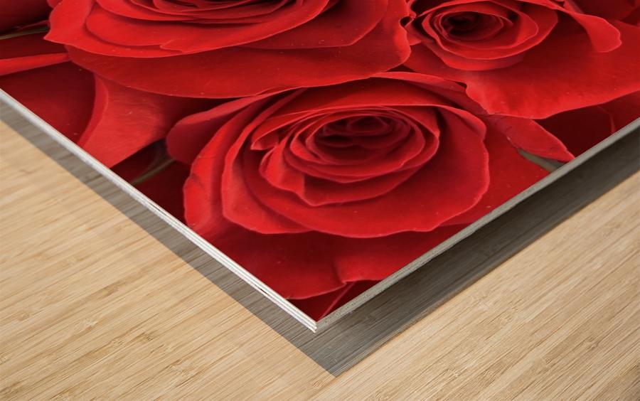 Eternal Roses Wood print