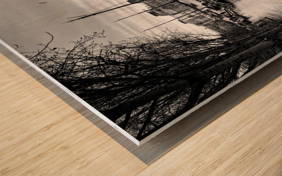 Ile de la Cite flood Impression sur bois