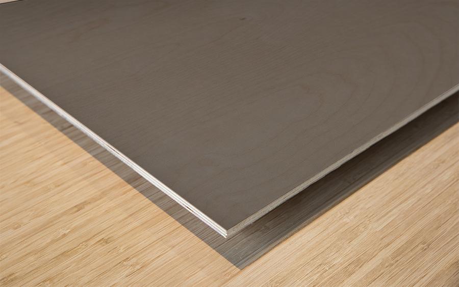 Abstract Sailcloth 7 Wood print