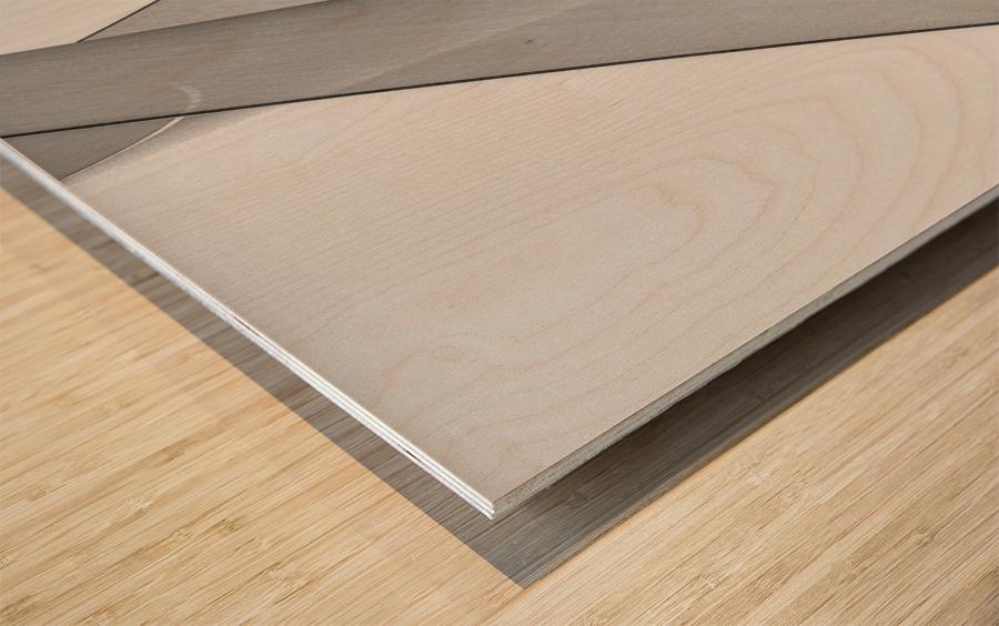 Abstract Sailcloth 8 Wood print