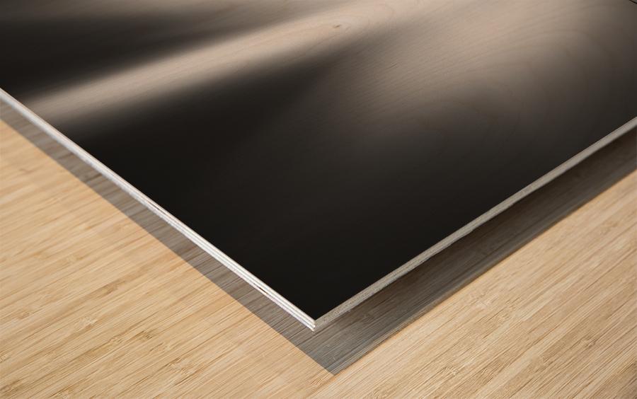 Defense Wood print