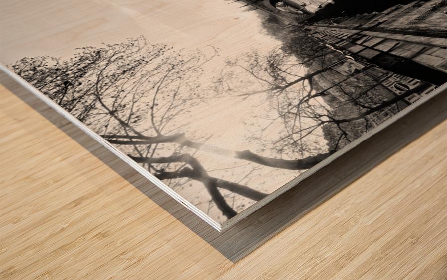 Alone in Paris Impression sur bois