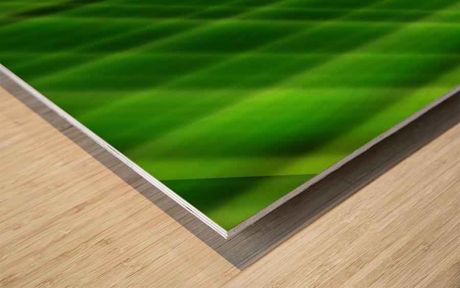 sofn 82E5E96C Wood print