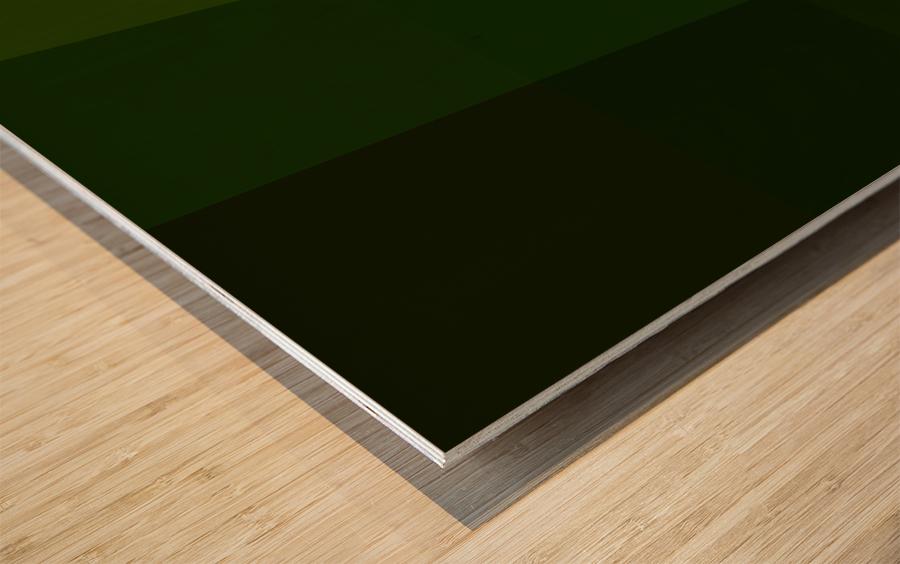reduci A2DE8A3C Wood print