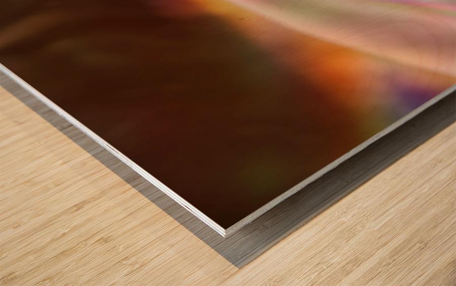 Through the Lens Wood print