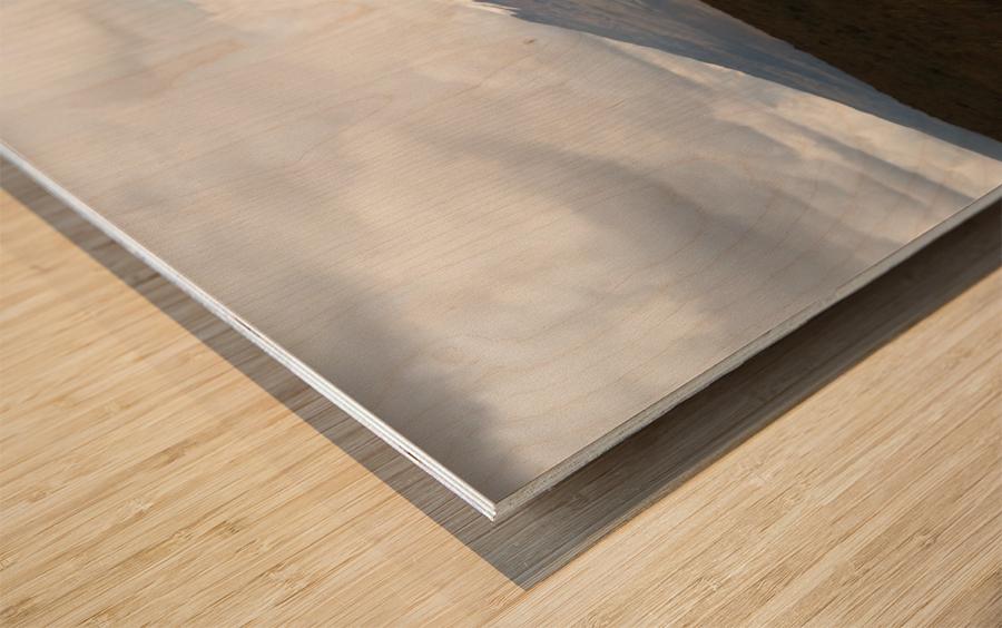 1748B712 BA68 4386 83ED 6D009210449E Wood print