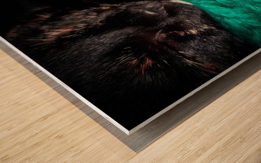 80CF134A 30F5 435E AE47 E42B13691760 Wood print