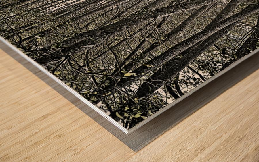 Boardwalk in the Woods Wood print