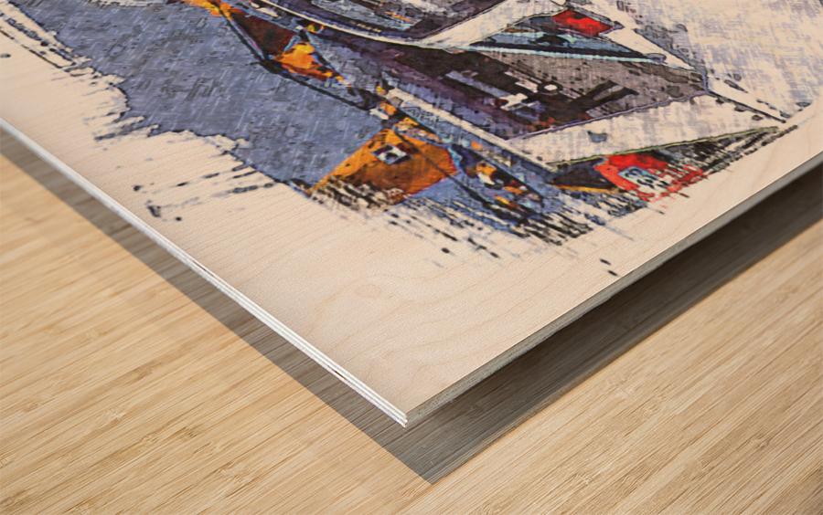 Canadian Snowbirds Wood print