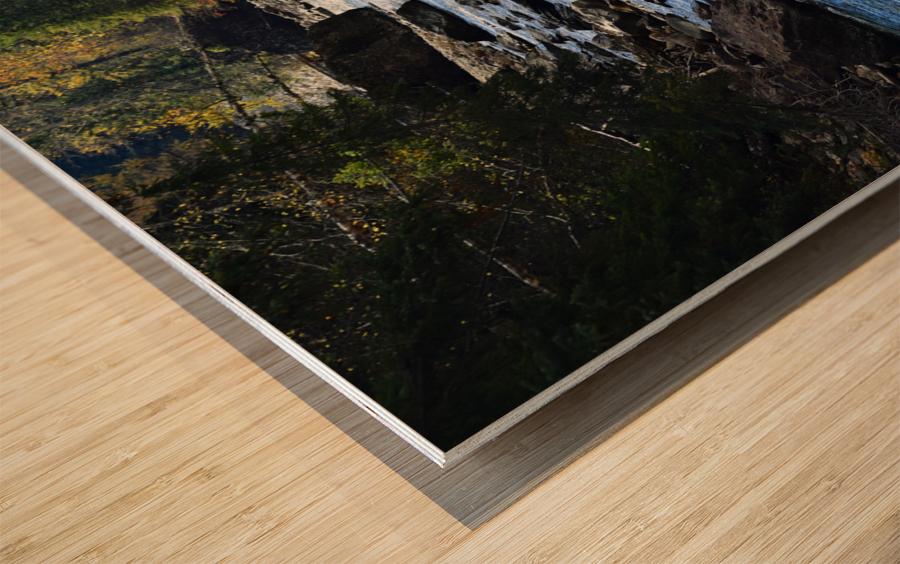 Babbling Brook Wood print