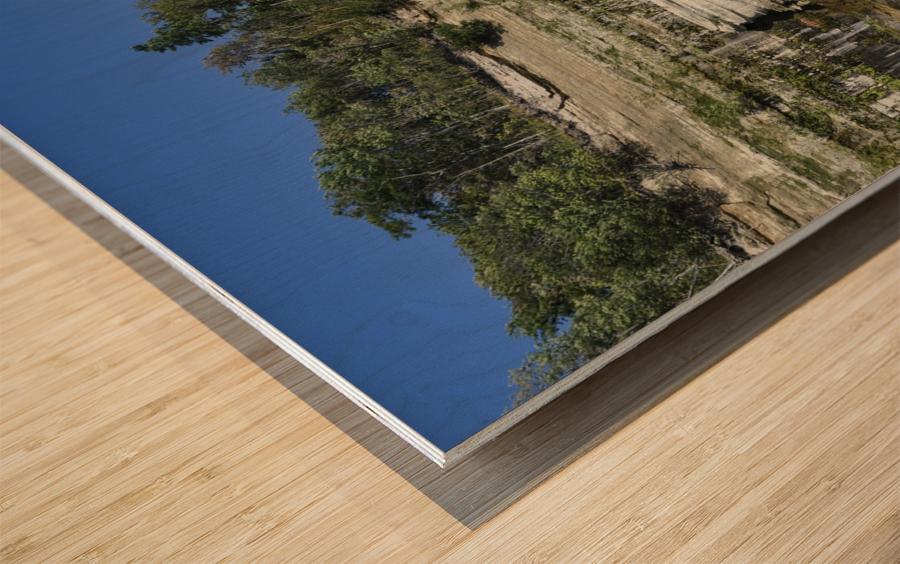 0234 Wood print