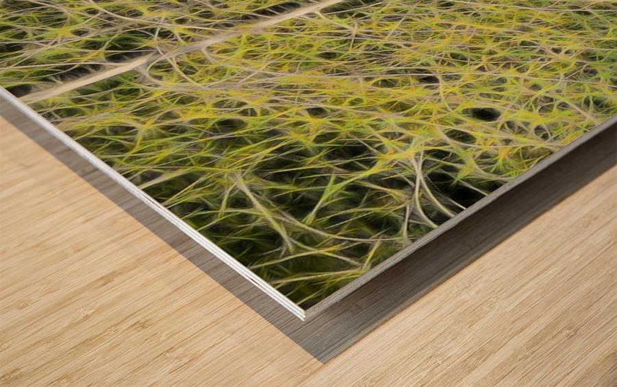 Simulated Saplings Wood print