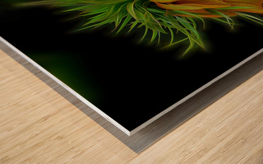 Crown Imperial Wood print
