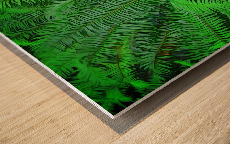 Just Ferns Wood print