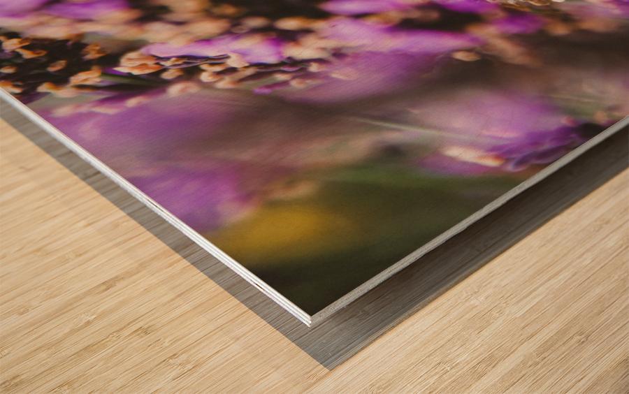IMG 7694 Wood print