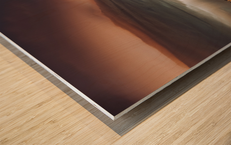 Shot In The Dark Wood print