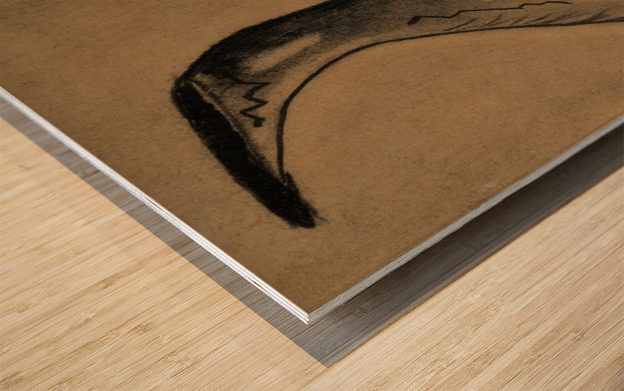 RA 030 -  כד מים Wood print