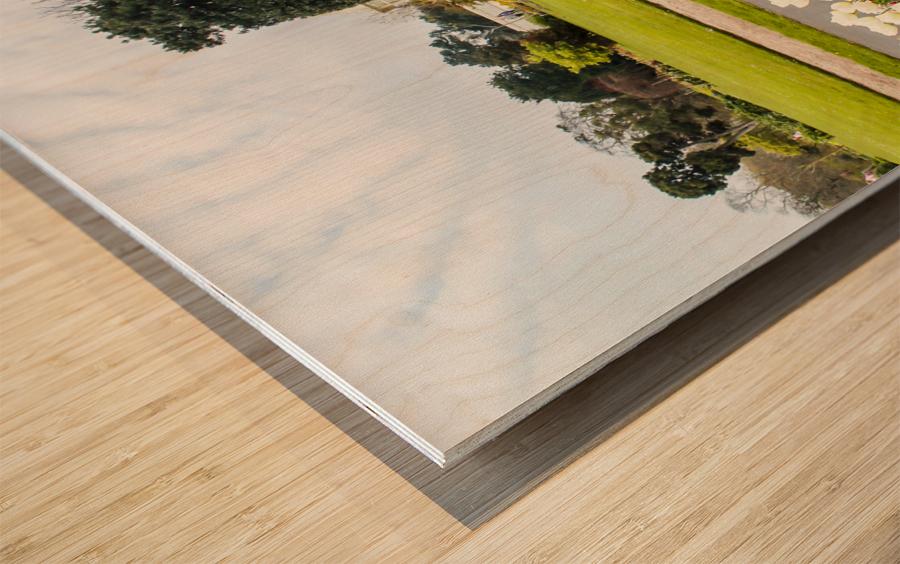 Botanic Garden II Wood print