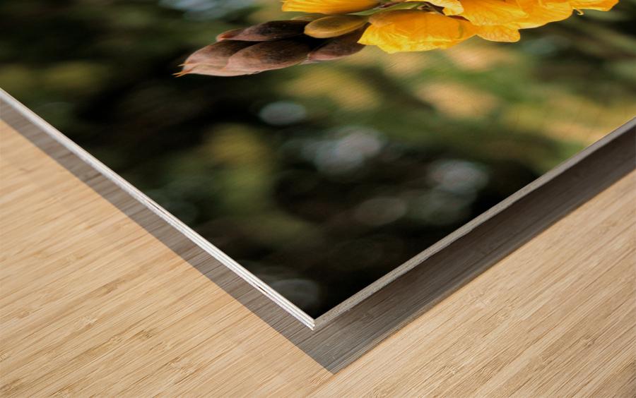 Yellow Wood print