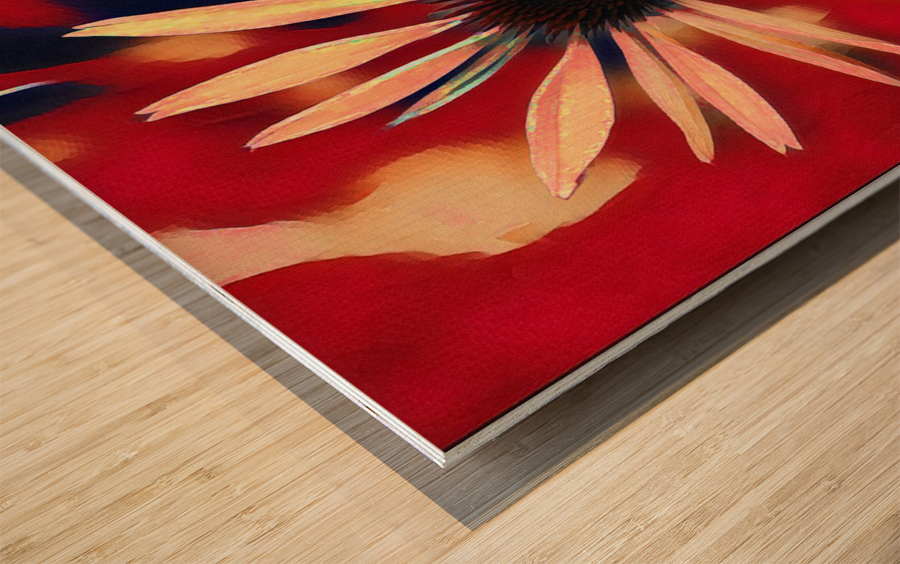 Two Coneflowers Wood print