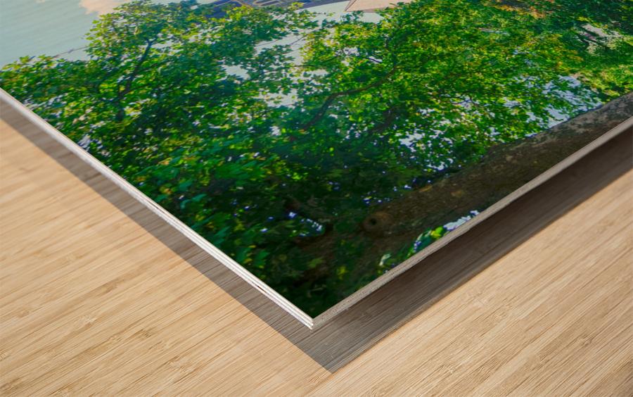 One Day in Interlaken Switzerland 1 of 3 Wood print