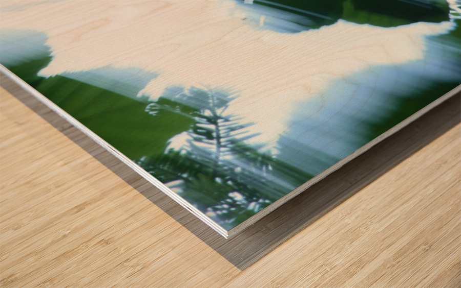 swift Wood print