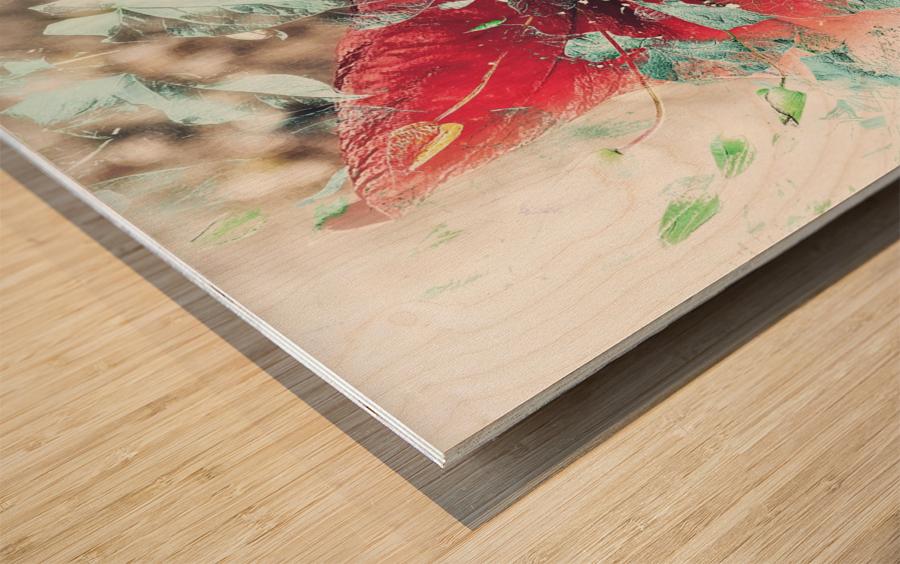Scarlett Pimpernel with Vine Wood print