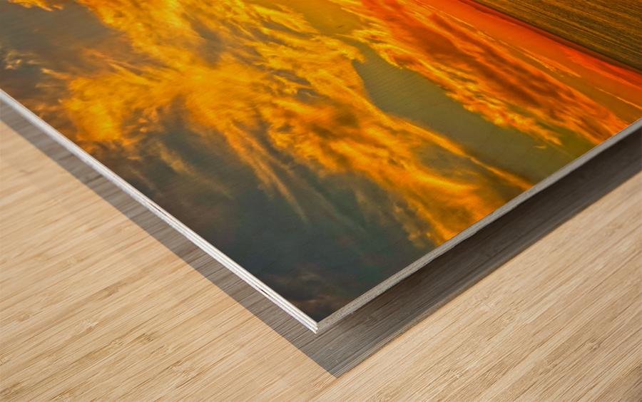Sunset over Catalina Island in Newport Beach California Wood print