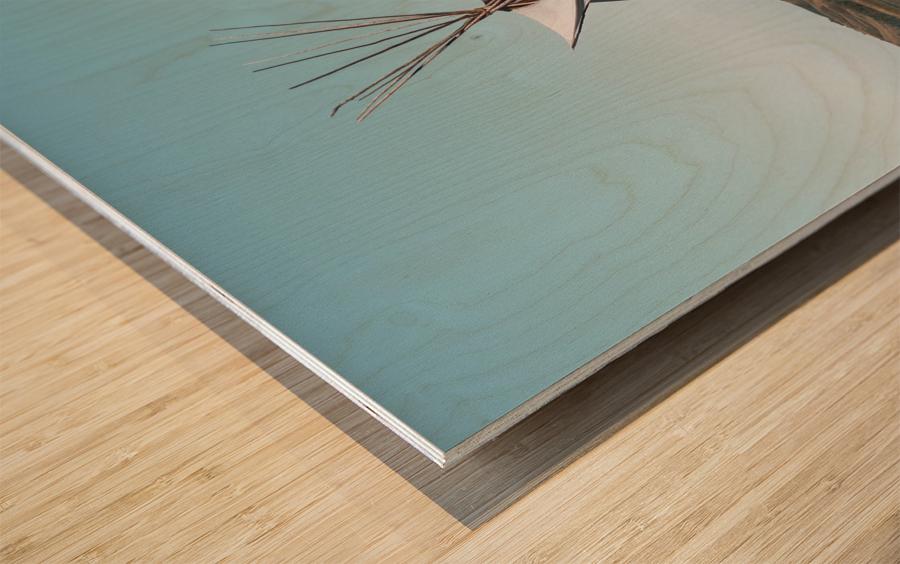 Cree Tipi Wood print