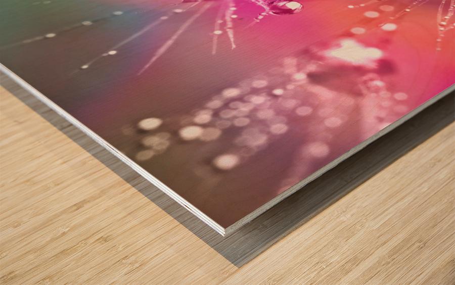 drop of water Wood print
