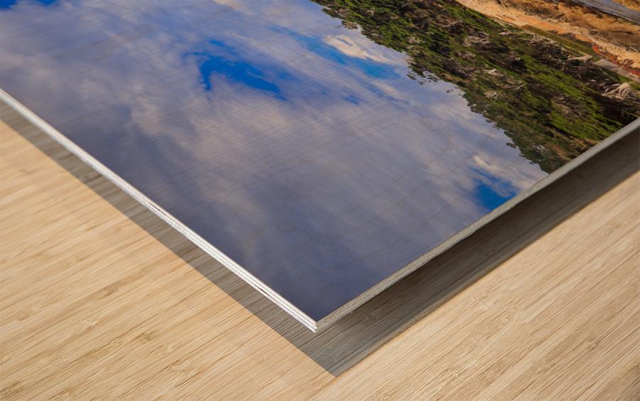 Carmel Coastline Wood print